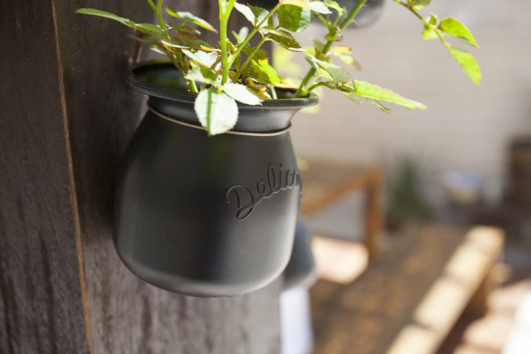 Potinho Delicari transformado em vaso